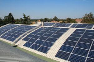 Tavalazzi preferisce l'energia pulita
